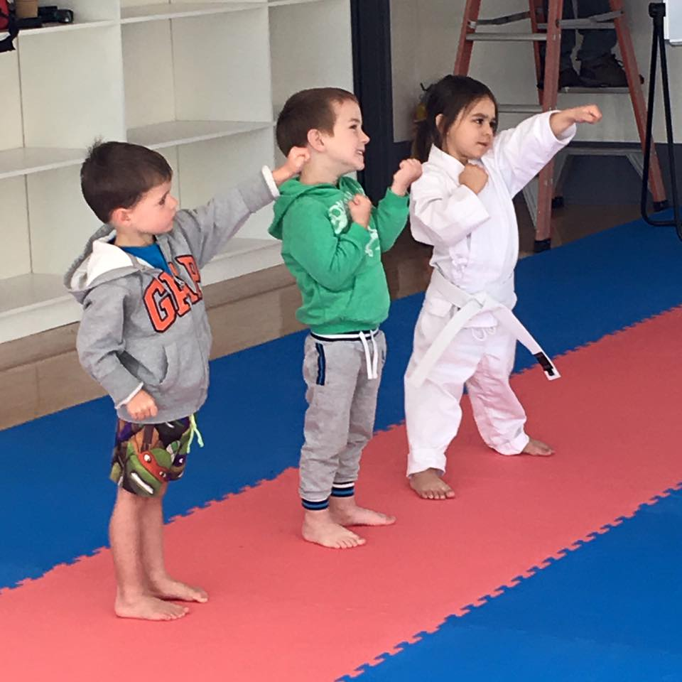 Tiny Tots Karate